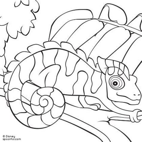 FREE Endangerment of Komodo Dragons Essay